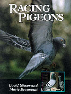 Racing Pigeons by David Glover