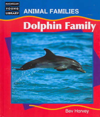 Dolphin Family by Bev Harvey