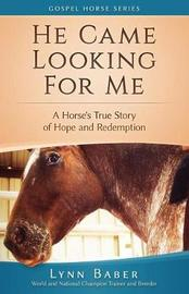 He Came Looking for Me by Lynn Baber