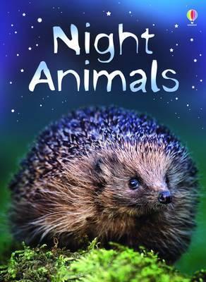 Night Animals by Sue Meredith