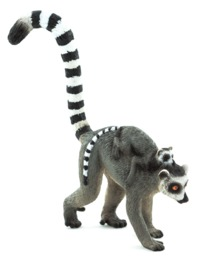 Animal Planet - Ring-Tailed Lemur with Baby