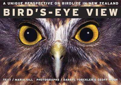 Bird's Eye View by Maria Gill image