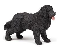 Papo - Newfoundland Terrier