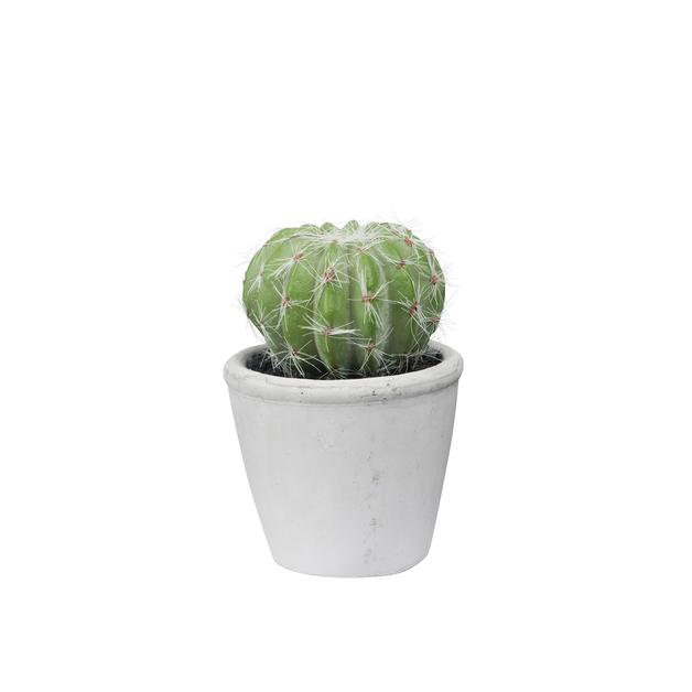 General Eclectic: Artificial Plant - Mini Barrel Cactus