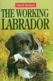 The Working Labrador by David Hudson