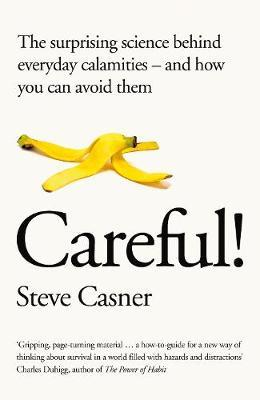 Risk by Steve Casner image