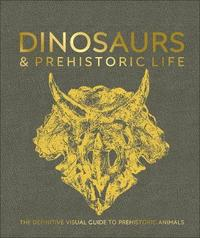 Dinosaurs and Prehistoric Life by DK image