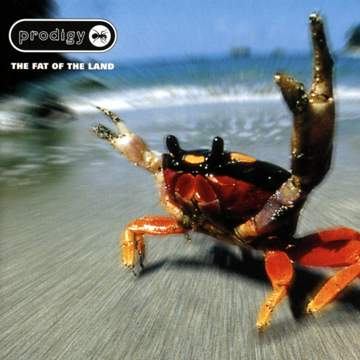 Fat of the Land (2LP) by The Prodigy image