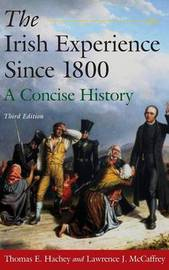 The Irish Experience Since 1800: A Concise History by Thomas E. Hachey image