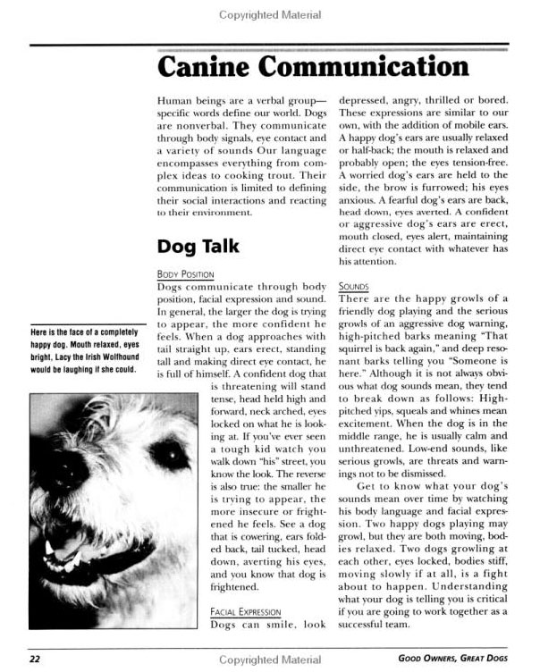 Good Owners, Great Dogs: A Training Manual for Humans and Their Canine Companions by Brian Kilcommons image