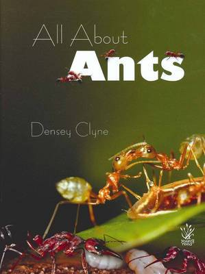 All About Ants by Densey Clyne image