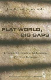 Flat World, Big Gaps image
