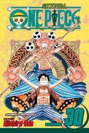 One Piece, Vol. 30 by Eiichiro Oda image