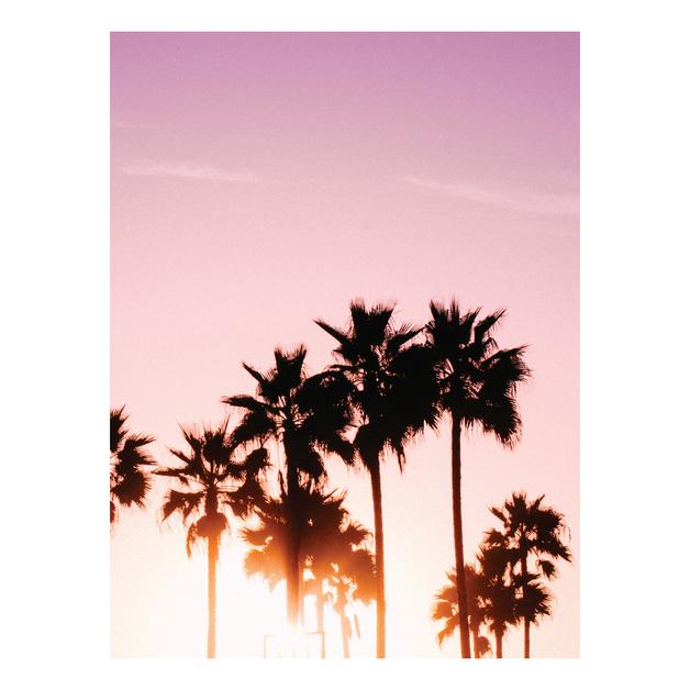 Habitat 101: Pink Palms Canvas