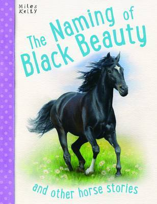Naming Of Black Beauty by Miles Kelly image