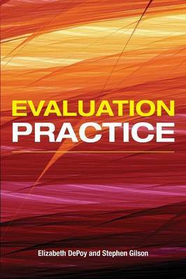 Evaluation Practice by Elizabeth DePoy image