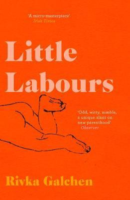 Little Labours by Rivka Galchen