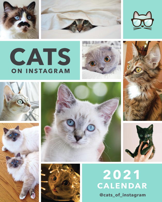 Portico: Desk Calendar 2021 - Cats On Instagram