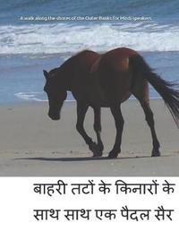 A walk along the shores of the Outer Banks for Hindi speakers by Celia Ross