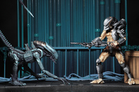 "Alien vs. Predator Arcade: Hunter Predator - 8"" Articulated Figure image"