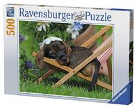 Ravensburger: Cute Dachshund - 500pc Puzzle