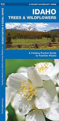 Idaho Trees & Wildflowers: An Introduction to Familiar Species by James Kavanagh image