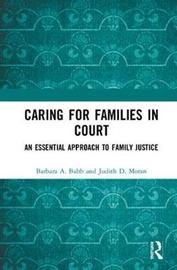 Caring for Families in Court by Barbara A Babb