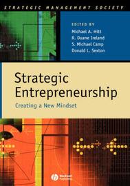 Strategic Entrepreneurship image