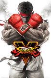 Street Fighter V: Maxi Poster - Ryu Key Art (463)