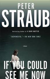 If You Could See Me Now by Peter Straub image