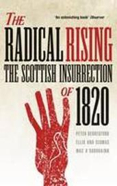 The Radical Rising by Peter Berresford Ellis