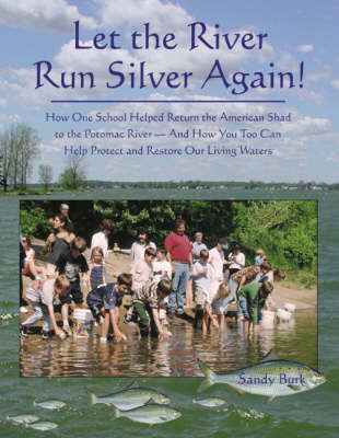 Let the River Run Silver Again! by Sandy Burk image