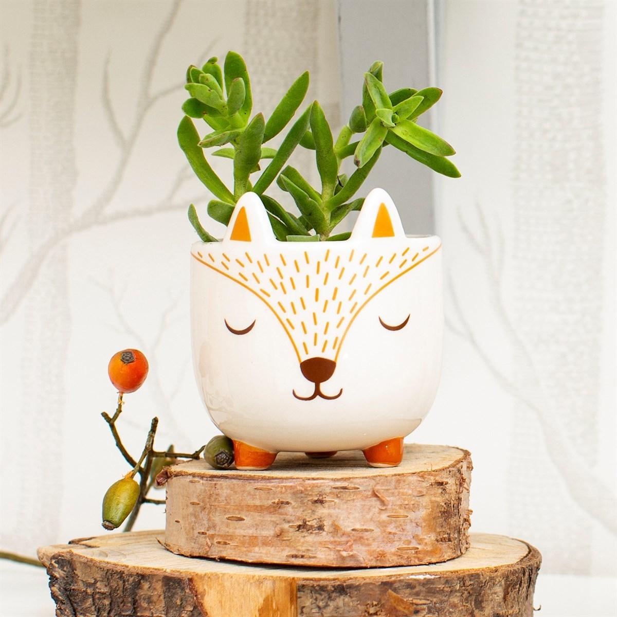 Sass & Belle: Mini Planter image