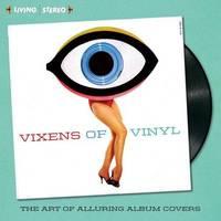 Vixens of Vinyl by David Boykin