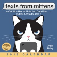 Texts from Mittens the Cat 2018 Desk Calendar by Angie Bailey