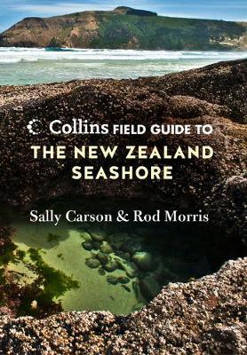 Collins Field Guide to the New Zealand Seashore by Sally Carson image