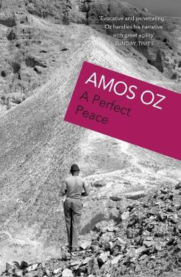 A Perfect Peace by Amos Oz image