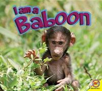 I Am a Baboon by John Willis