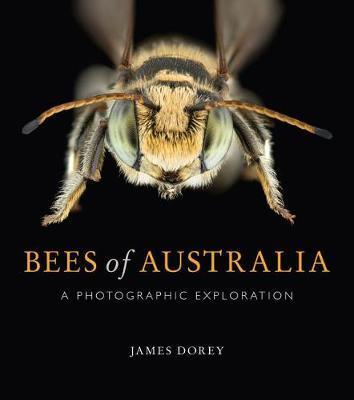 Bees of Australia by James Dorey image