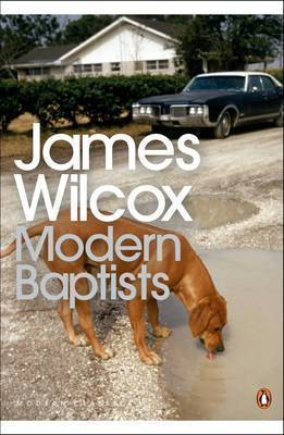 Modern Baptists by James Wilcox