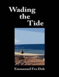 Wading the Tide by Emmanuel Fru Doh image
