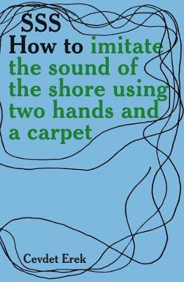 SSS How To Imitate The Sound Of The Shore Using Two Hands And A Carpet. Cevdet Erek by Cevdet Erek image