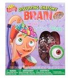 Scientific Explorer: Disgusting Anatomy - Brain Science Kit