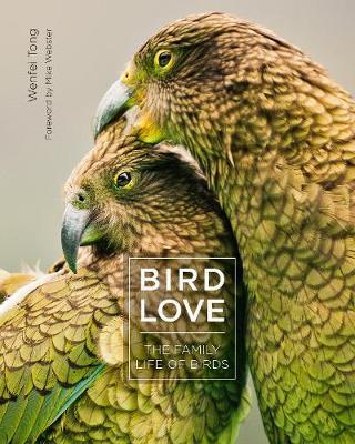 Bird Love by Wenfei Tong