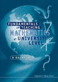 Fundamentals Of Teaching Mathematics At University Level by B. Baumslag