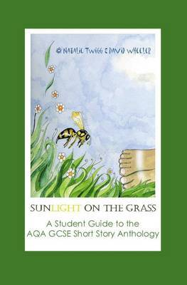 Sunlight on Grass: a Student Guide to the AQA GCSE Short Story Anthology by Natalie Twigg