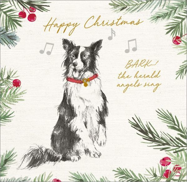 Art Marketing:Boxed Christmas Cards - Bark The Herald image
