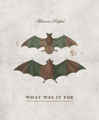 What Was It for by Adrienne Raphel