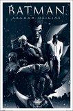 Batman Arkham Origins Montage Wall Poster (118)