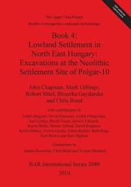 Lowland Settlement in North East Hungary: Bk. 4 by John Chapman
